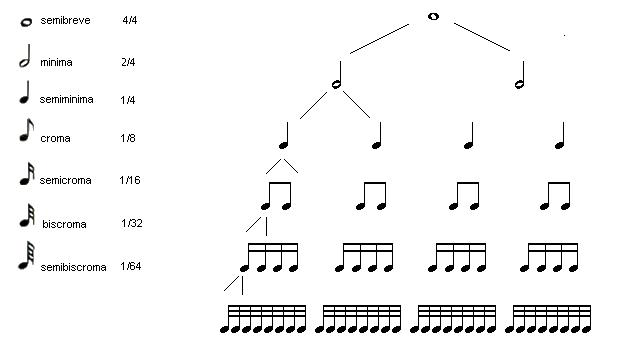 durata delle note musicali