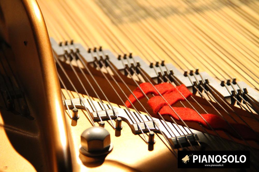 Pianosolo-Foto