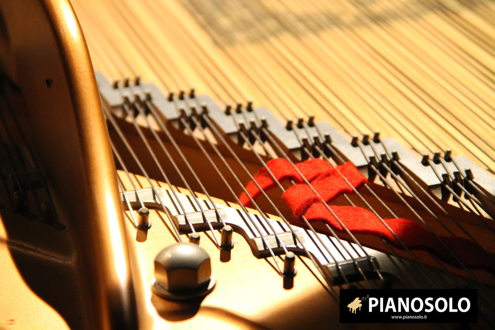 Pianosolo-Foto