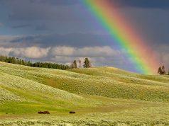 spartito-over-the-rainbow
